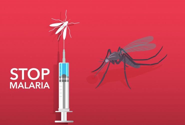 Lancet Commission 2018: India Fourth Largest in Global Malaria Scenario