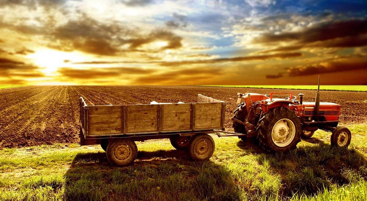 Agriculture And Rural Welfare