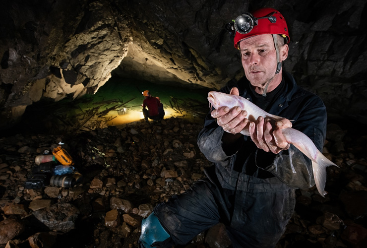 Now, World's Largest 'Cave Fish' in India's Meghalaya!