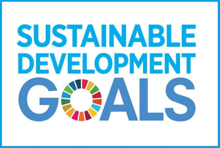 Indian Teen Udit Singhal Named in UN's 2020 Class of Young Leaders for SDGs